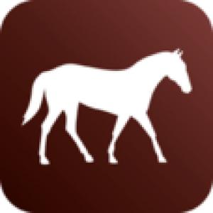 Chisholm Trail Veterinary Clinic of Texas